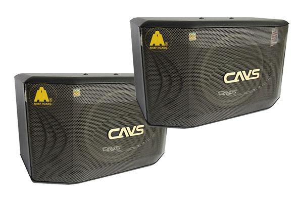 Loa karaoke CAVS 700